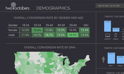 demographics template for two octobers website cropped