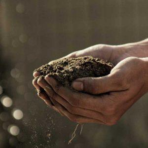 hands holding dry soil
