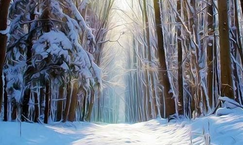 painting of snowy forest path