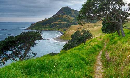 walking path next to seaside